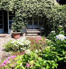 vacanze sul Lago Maggiore a Villanuvola: il giardino di Villanuvola